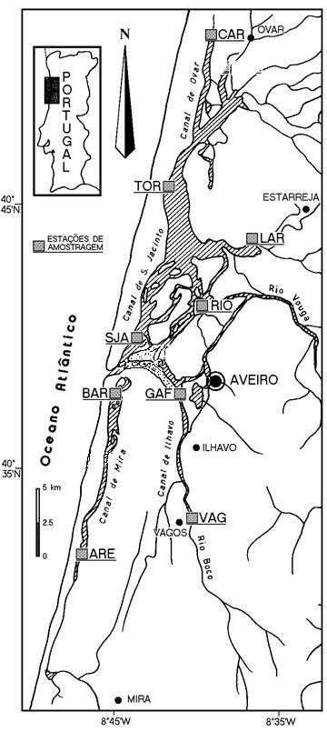 mapa da ria de aveiro Enguias da Ria de Aveiro | Um ex libris a preservar mapa da ria de aveiro